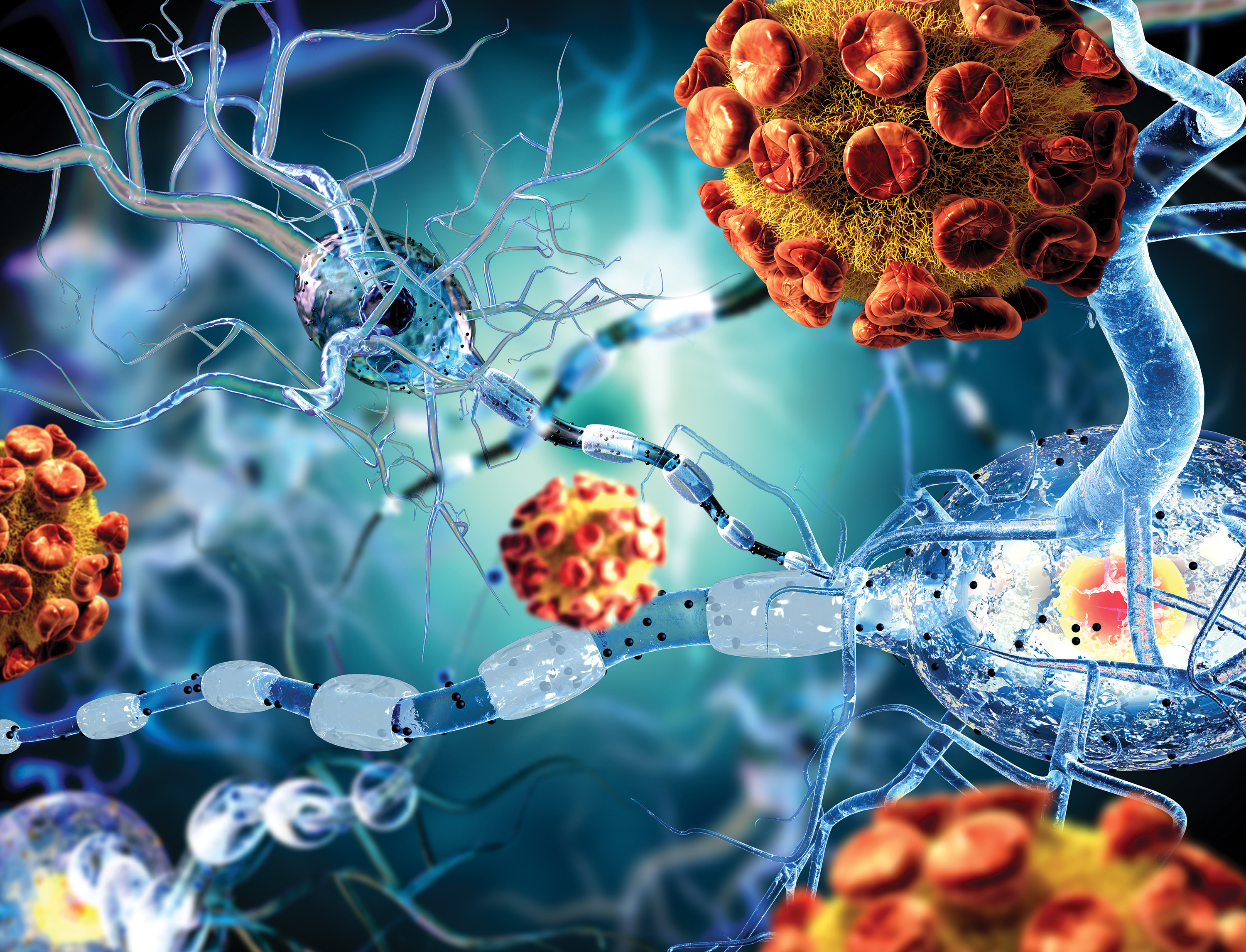 An autoimmune disease, unfortunately, defines conditions in which the immune system attacks the host, sometimes in life-threatening ways